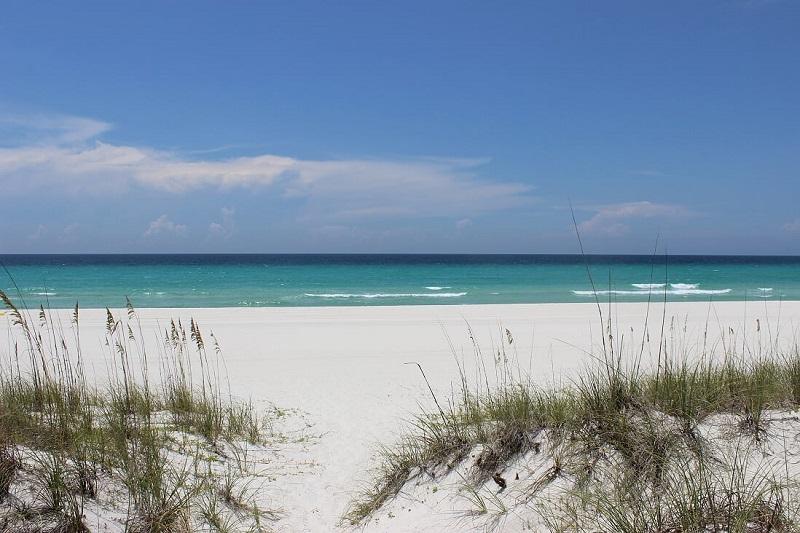 Beach dunes © Panama City Beach