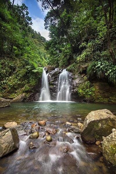 Pool im Regenwald auf Martinique_© Comité Martiniquais du Tourisme