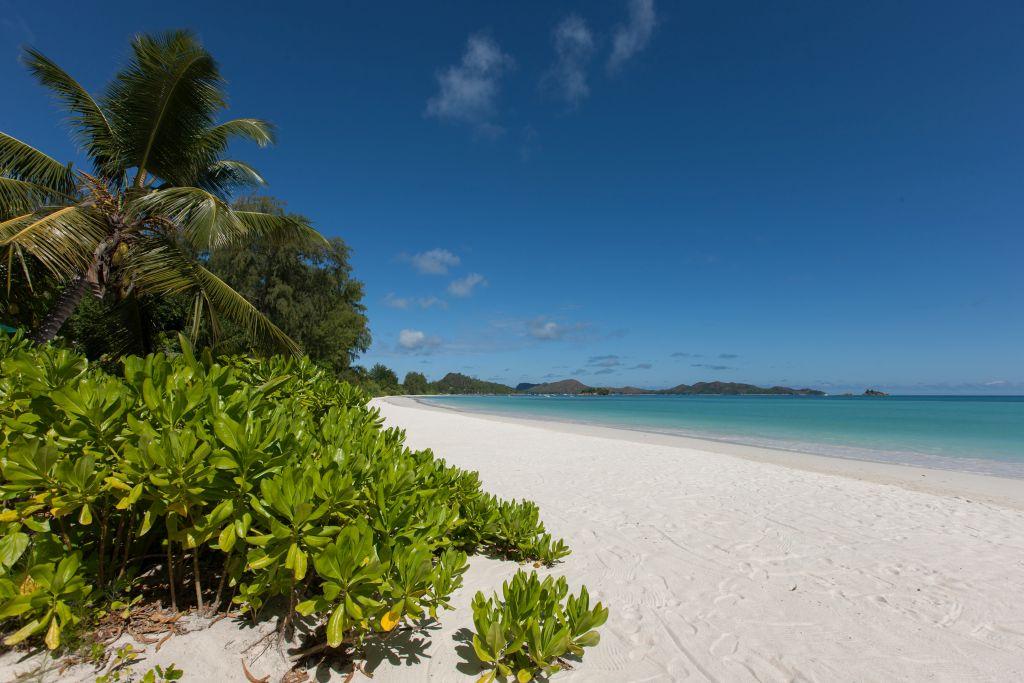 Der Salazie-Track ist neben dem Pasquière-Track einer von zwei schönen Wanderungen auf Praslin, der zweitgrößten Insel der Seychellen.