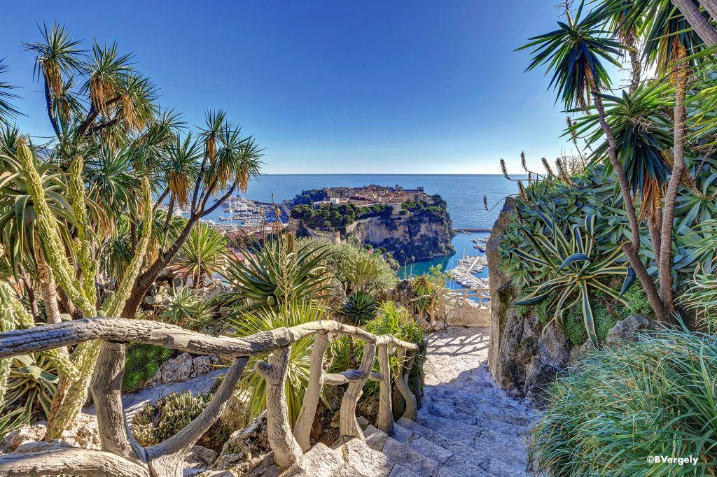 Ein Besuchermagnet ist schließlich der Jardin Exotique, ein in den Felsen gebauter Tropengarten.